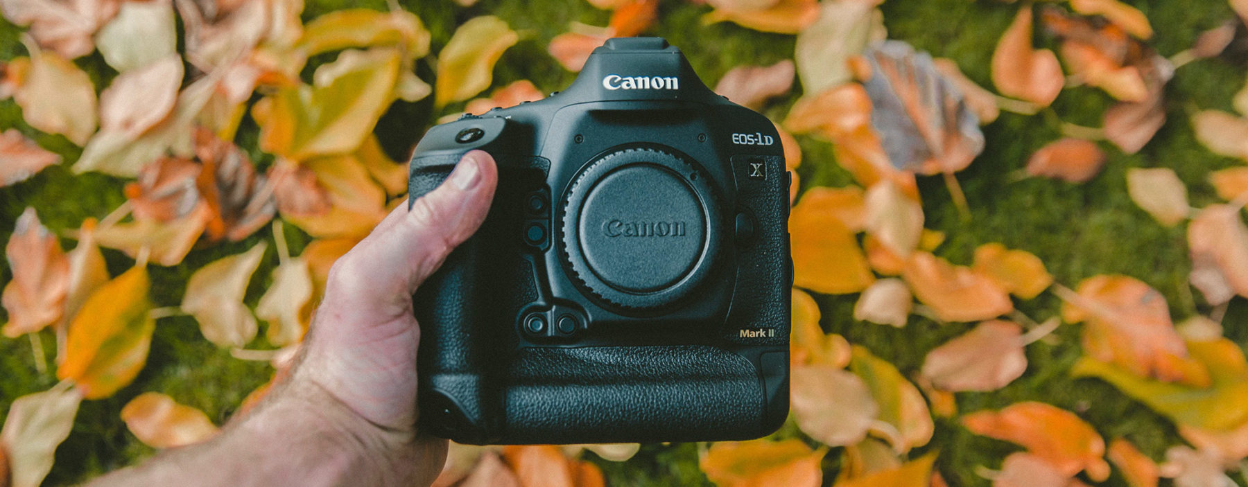 Camera held by hand